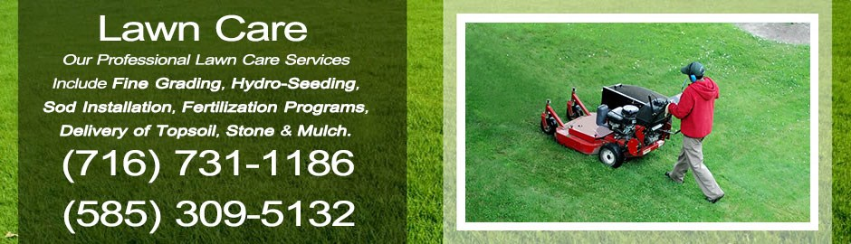 Buffalo landscaping buffalo lawn care services henry for Lawn maintenance service